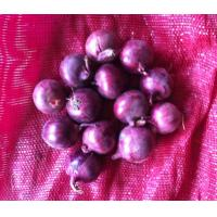 Buy cheap 2014 Fresh red onion from wholesalers