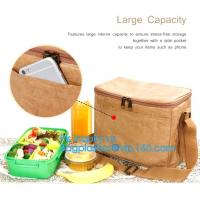 Custom Eco friendly tyvek Lunch bag Insulated Cooler bag,tyvek kraft paper insulated aluminum foil lunch box bag with sn