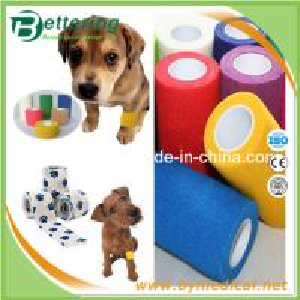 Best Non woven Veterinary Bandage Pet bandage wrap cohesive elastic bandage wholesale