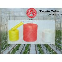 Best UV Stabilized 1mm 1.5mm Colorful Polypropylene Twine for Tomato Tying wholesale