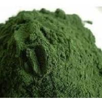 Best Spirulina Powder wholesale