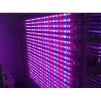 Best 14 Watt Hydroponic LED Tube Grow Lights Blue / Red Light Source , Dia26*900mm wholesale