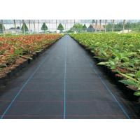 Best UV Resistance Geosynthetic Fabric PP Woven Weed Mat For Prevent Grass Growth wholesale
