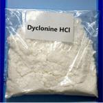 Best Dyclonine Local Anesthetic CAS 536-43-6 Dyclonine Hydrochloride Dyclonine HCL Powders wholesale