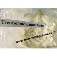 Best Professional Trenbolone Enanthate 200mg Anabolic Bodybuilding Muscle Enhancing 10161-33-8 wholesale