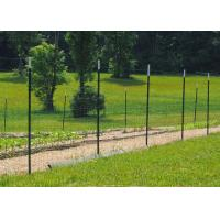 Best Heavy Duty Metal T Post / Green Fence Post Low Carbon Steel Material wholesale