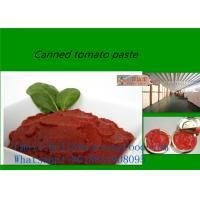 Best high quality tomato paste of brix 18-28 in tin/cans wholesale