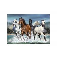 Cheap Runnig Horse 3D Lenticular Pictures For House Decorative 0.6mmPET for sale