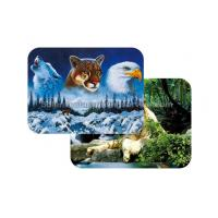 Cheap Waterproof Plastice 3D Lenticular Placemats Directly Printing PET for sale