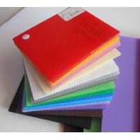 China Impact Resistance Correx Plastic Sheets Danpla sheet For Construction Protection on sale