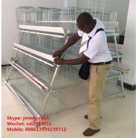 Best Automatic Egg Collection Equipment 3tier 4 tier 5tier A Type Poultry Farm Layer Cage Equipment wholesale