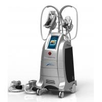 China See larger image 2014 cryolipolysis new system cryolipolysis fat freezing machine with FAD CE approved on sale