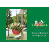 Best Self Watering Hanging Flower Baskets / Hanging Baskets For Plants wholesale