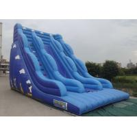 Best Inflatable Bouncy Castle With Slide Blue Color Cartoon Characters Printed wholesale