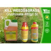 Best Glyphosate 41% SL Selective Herbicide Control of perennial weeds  Cas No. 1071-83-6 wholesale