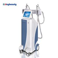 Best Body Shaper Cryolipolysis Slimming Machine Weight Loss With Membranes wholesale