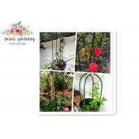 Best Eco Friendly Solid Durable Green Ushape Pipe Flower Support Garden Plant Supports wholesale