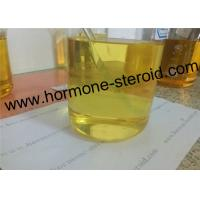 Best 62-90-8 Nandrolone Phenylpropionate Injectable Anabolic Steroids NPP To Treat Anaemia wholesale