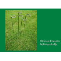 Cheap Metal Garden Plant Supports Length 18 inches Width 0.98 inches color green Plant support type Stake for sale