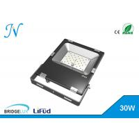 Quality Warm White 30 Watt Rechargeable Led Floodlight Dimmable Led Flood Light Fixtures wholesale