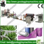 Best EPE BLOCK MATTRESS EPE Foam Sheet Extrusion Plant(FCFPM-170) wholesale