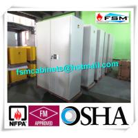 Best Metal Fireproof Storage Cabinets With 2 Door For Large File / Documents wholesale