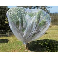 Buy cheap Fruit Tree Net, 20-50mesh,0.5-6.0m,green and white,protect the trees,Agricultura from wholesalers