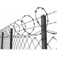 Best Concertina Barbed Wire with Galvanized Zinc Coated Chain Link Fence for High Security wholesale
