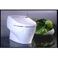 Best self-clean bidet toilet luxury toilet and bidet without water tank automatic self-clean toilet wholesale