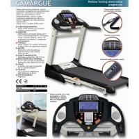 Best 2010 new semi-commercial  treadmill with 22KM/H wholesale