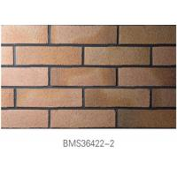 Best Low Water Absorption Exterior Thin Brick Durable For Real Estate wholesale