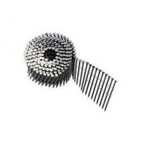 Best Wire Collated Galvanised Coil Nails For Construction Screw Shank Available 2'' x .120'' wholesale