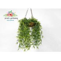 Cheap Customized Steel Wire Hanging Flower Baskets , Hanging Plant Pots for sale