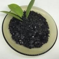 Best Solid Performance Kelp Powder Fertilizer , Organic Water Soluble Fertilizer Black wholesale