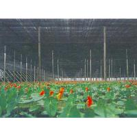 Outdoor Greenhouse Sun Shade Netting For Vegetable , Flower Growth