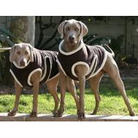 China Polar Fleece Pet Dress on sale