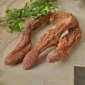 Buy cheap China xinjiang Wild dried caulis songaria cynomorium herb Suo Yang whole plant from wholesalers