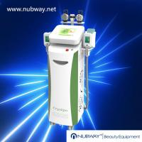China 2014 Newly-designed!!! The most featured Cryolipolysis Slimming Machine Green Vertical on sale