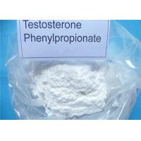 Anabolic Steroid White Powder Testosterone Phenylpropionate CAS NO: 1255-49-8 for Muscle Growth