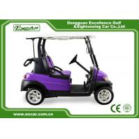 Best Purple And Black 2 Passenger Electric Car 48V With 1 Year Warranty wholesale