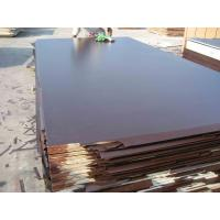 Best Film faced plywood with high quality  wholesale