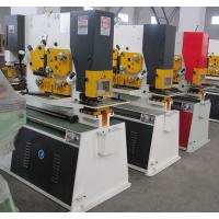 Best Q35Y Combined Hydraulic ironworker Machinery , Steel Hole Punch Machine wholesale