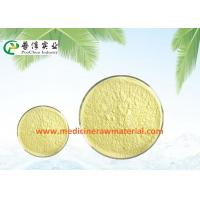 Best Natural Sophora Japonica Extract , Pure Plant Extracts 95% Quercetin Antioxidant wholesale