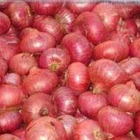 Buy cheap Red onion for sale from wholesalers