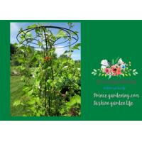 Cheap Flower Supports Plant Stakes , Tall Plant Support For Climbing Plants for sale
