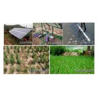 China Solar Irrigation Pump on sale
