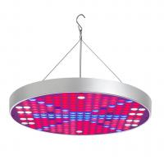 Best 50W Full Spectrum UV IR LED Grow Light for Indoor Plant / Greenhouse wholesale