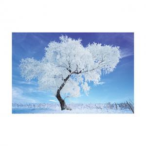 Best 0.6mm PET 40*60cm 3D Lenticular Poster / 3D Depth Effect Lenticular Landscape Poster wholesale