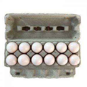 Best Qisheng egg tray machine egg tray production line paper tray manufacturing machine egg carton machine price wholesale
