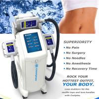 Best Non Surgical Cryolipolysis Fat Freezing Machine / Body Slimming Equipment 230VAC 50Hz wholesale